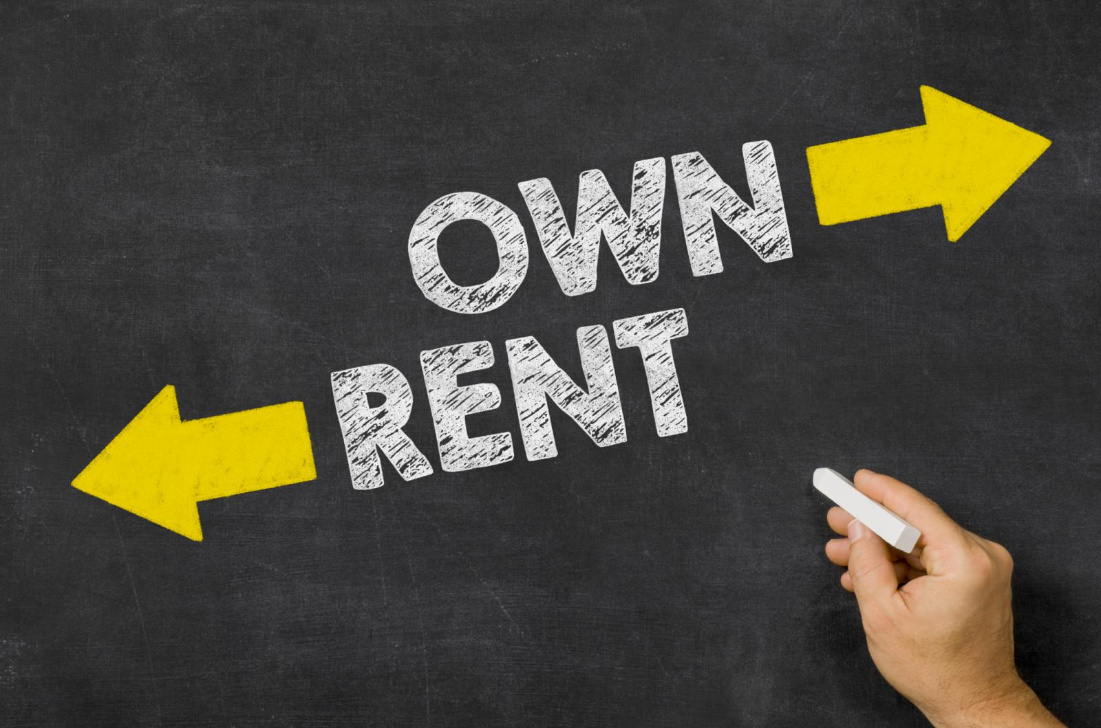 reiwa standard application and offer of option to lease