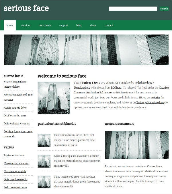 css3 themes single page application