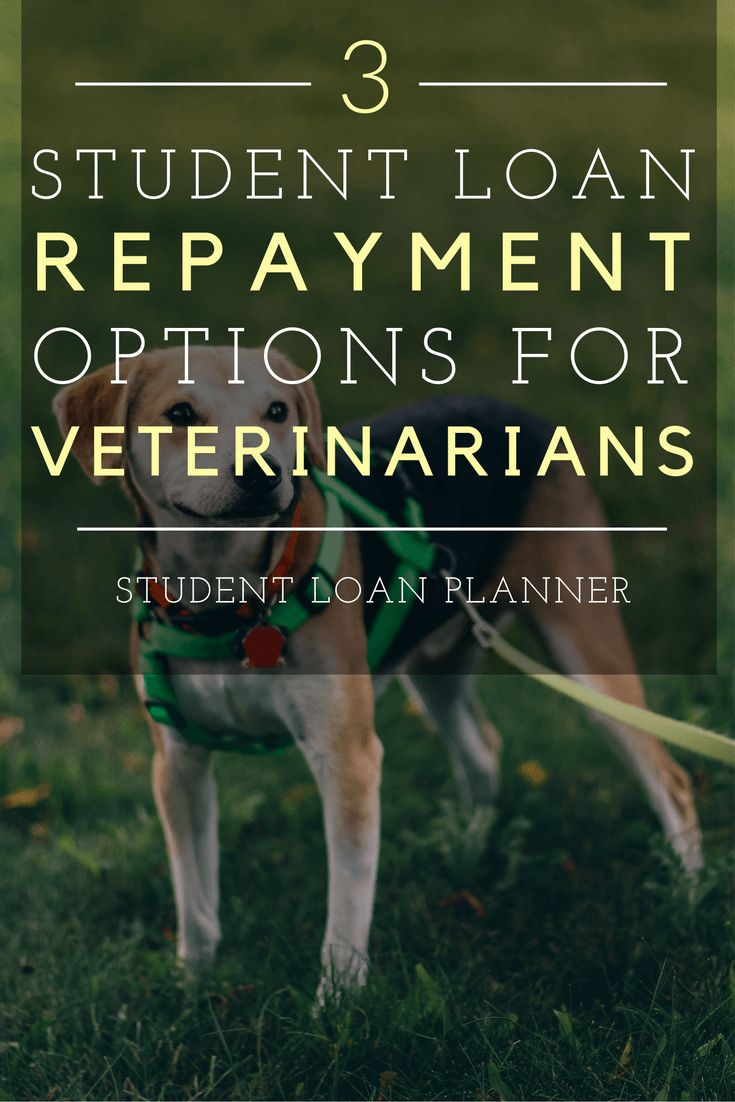 vet student loan applications consultants